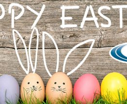 Happy Easter from Malark Companies!